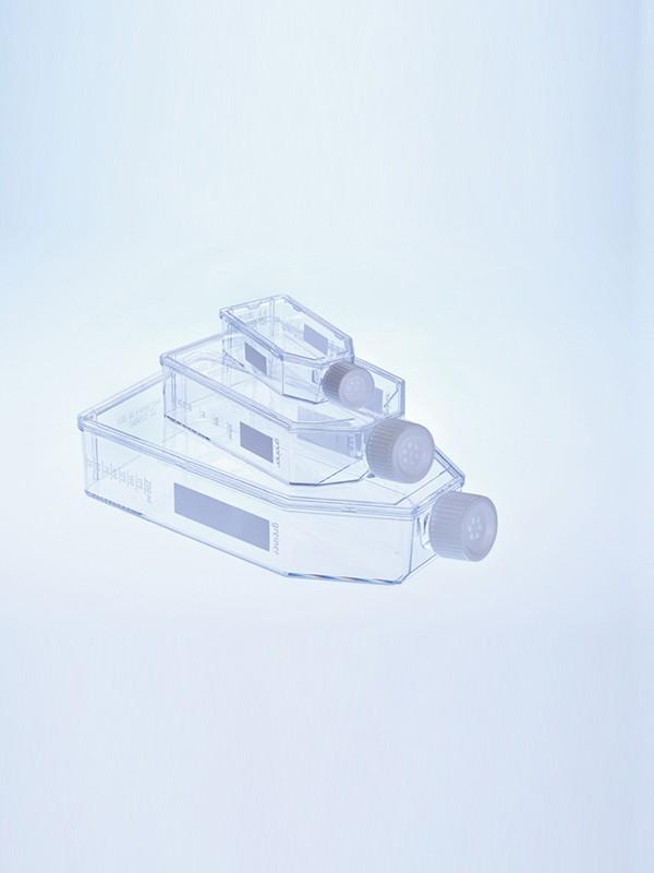 Frascos de cultivo de suspensión estándar con tapón con filtro
