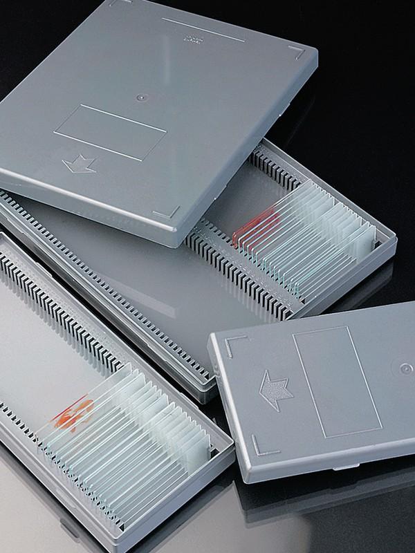 Cajas para archivo y transporte